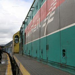 TranzAlpGreym_23.jpg