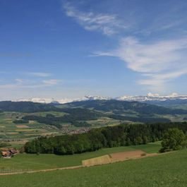 panorama_v1_wm.jpg